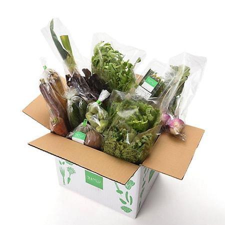 【産地直送】エビベジ 季節の野菜セット