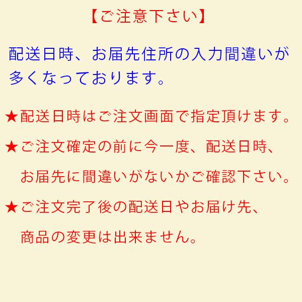 プリケーキ(マリン柄)【特典缶バッジ付き】[コウペンちゃん]