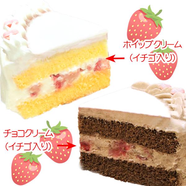 プリケーキ(笠松幸男)【特典缶バッジ付き】[黒子のバスケ]