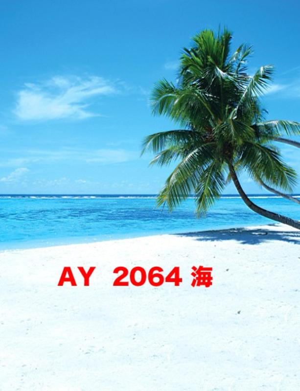 「新」マイクロファイバー・撮影用シーン背景(1.5x2m)_AY15-2064