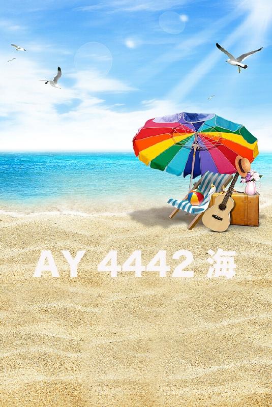 「新」マイクロファイバー・撮影用シーン背景(1.5x2m)_AY15-4442