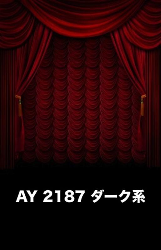 「新」マイクロファイバー・撮影用シーン背景(2x3m)_AY23-2187