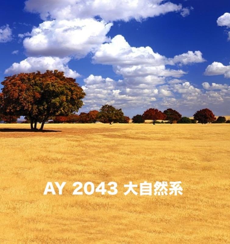 「新」マイクロファイバー・撮影用シーン背景(2x3m)_AY23-2043