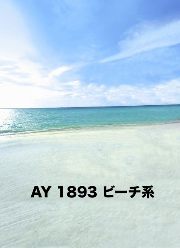 「新」マイクロファイバー・撮影用シーン背景(2x3m)_AY23-1893