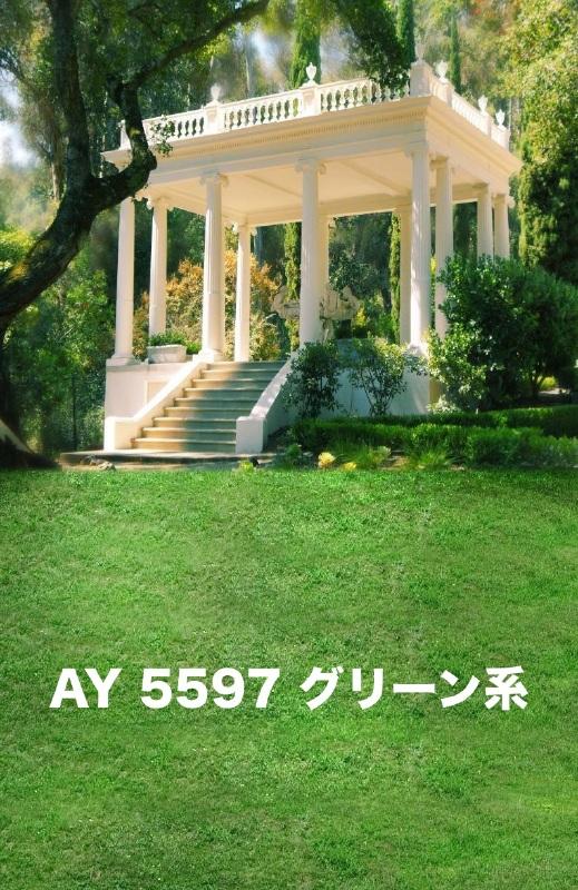 「新」マイクロファイバー・撮影用シーン背景(2x3m)_AY23-5597