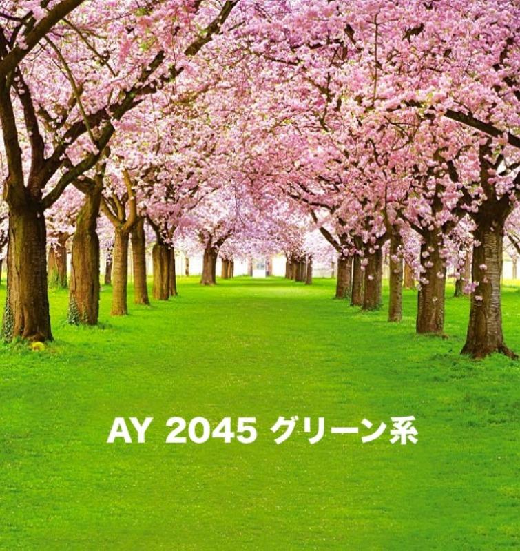 「新」マイクロファイバー・撮影用シーン背景(2x3m)_AY23-2045