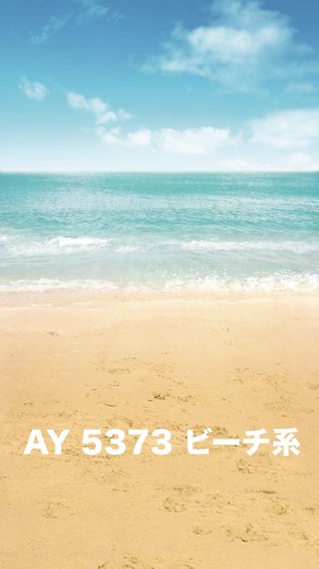 「新」マイクロファイバー・撮影用シーン背景(2x3m)_AY23-5373