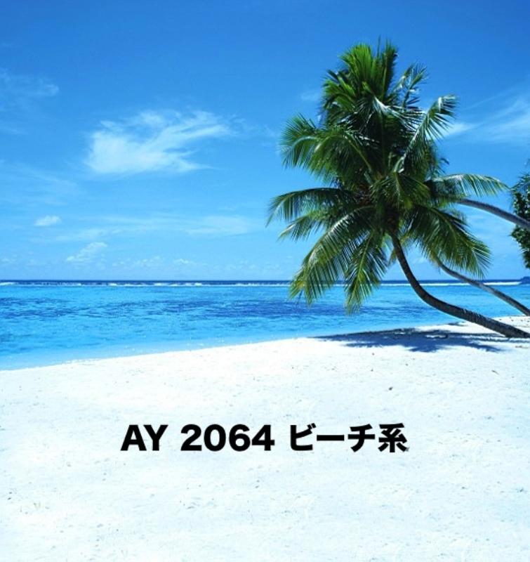 「新」マイクロファイバー・撮影用シーン背景(2x3m)_AY23-2064