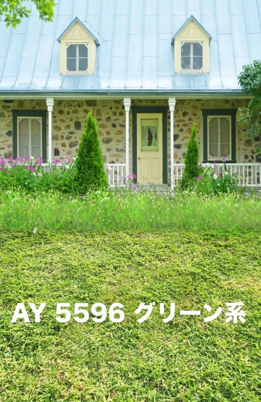 「新」マイクロファイバー・撮影用シーン背景(2x3m)_AY23-5596