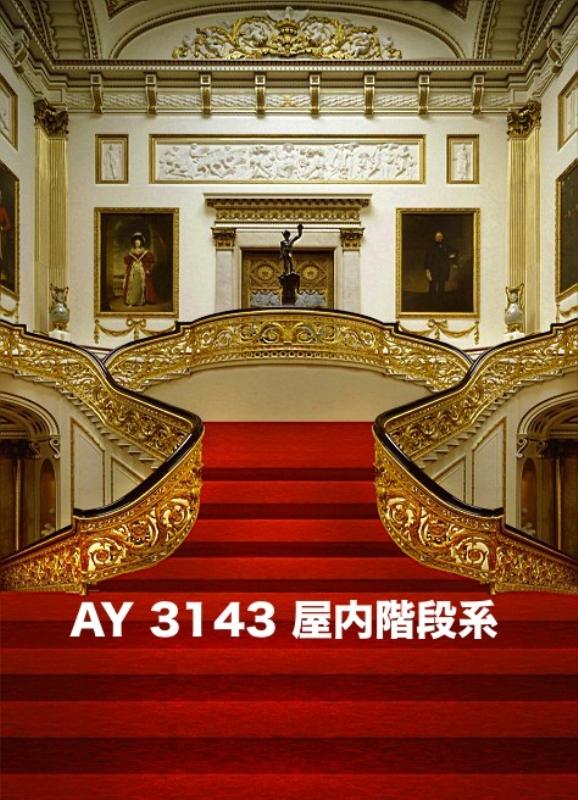 「新」マイクロファイバー・撮影用シーン背景(2x3m)_AY23-3143