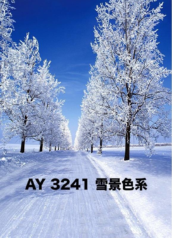 「新」マイクロファイバー・撮影用シーン背景(2x3m)_AY23-3241