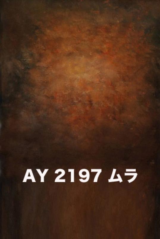 「新」マイクロファイバー・撮影用シーン背景(2x3m)_AY23-2197
