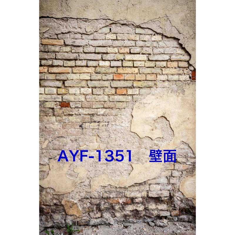 「新」マイクロファイバー・撮影用シーン背景(1.5x2m)_AY15F-1351