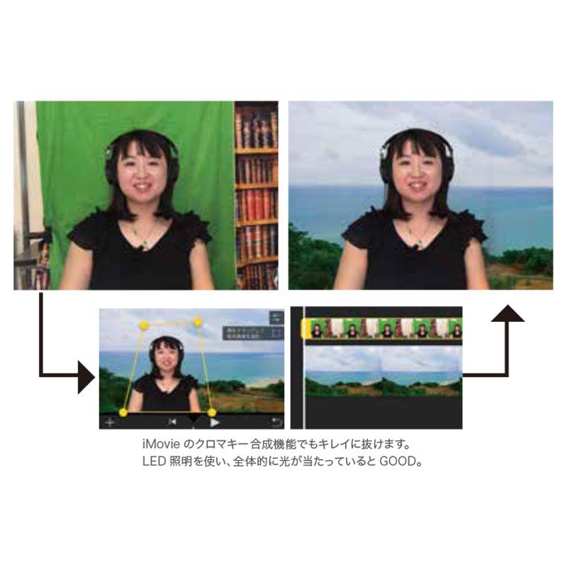 マイクロファイバー背景グリーン(横3m×縦2m) LL-0048-32