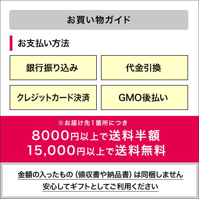 【お中元添え状付き】シンプルプリンセット6種×ソース全12種