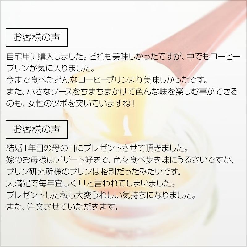 【ホワイトデーカード付き】プリン研究所人気フレーバー12種セット【送料込み】