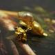 K18 ゴールドケシ コアラ タイニーピン