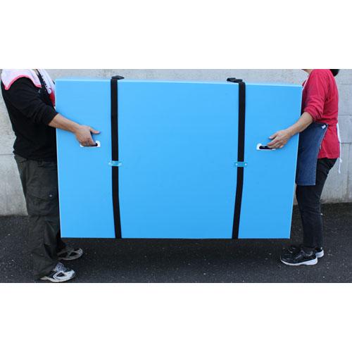 プラダン 薄型テレビボックス 緩衝材付 55型 10枚