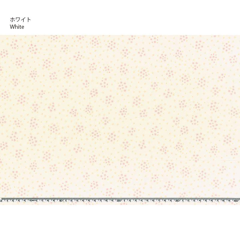 web2001- A 04 10cm
