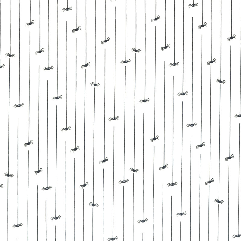 web20200912-03 ハロウィン くも  10cm(プレゼント付き)