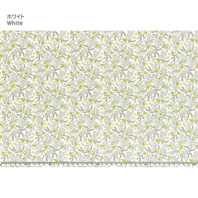 web20210218-01 FLOWERS FOR FREYA ミニカット