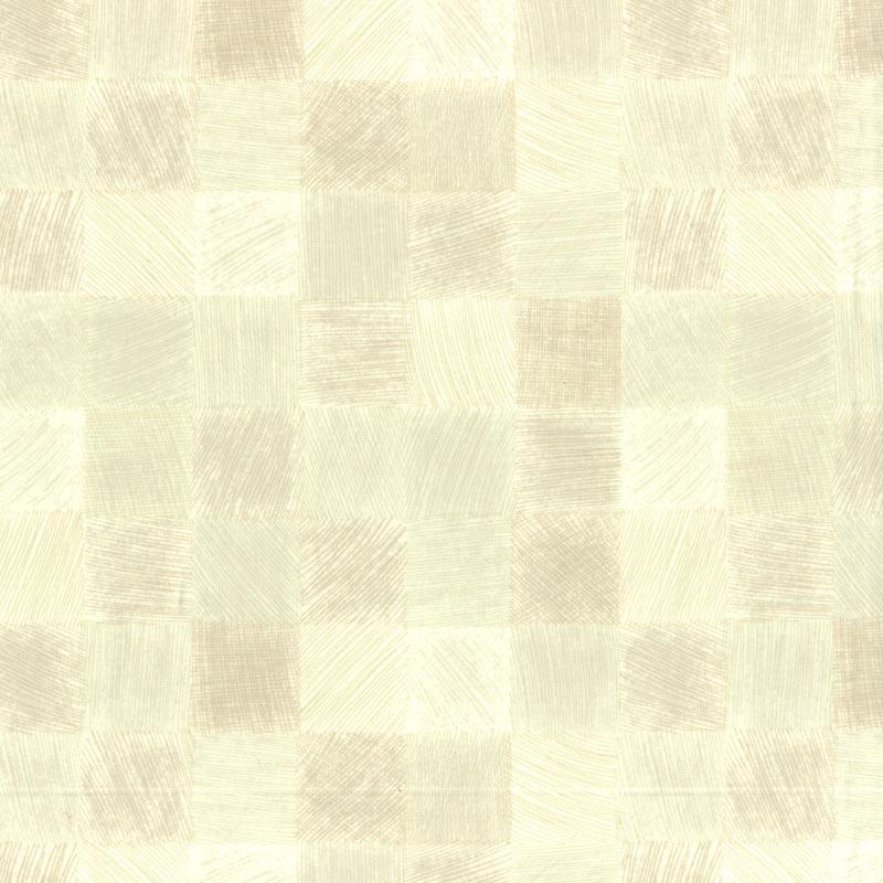 web2004-A05 ミニカット