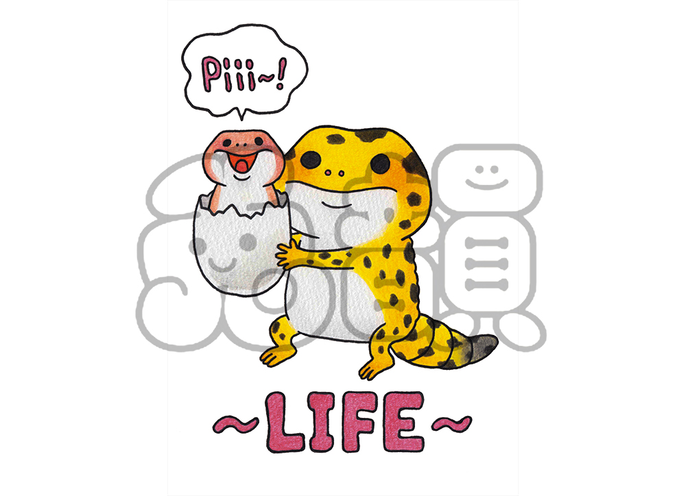 LIFE(Lady's)