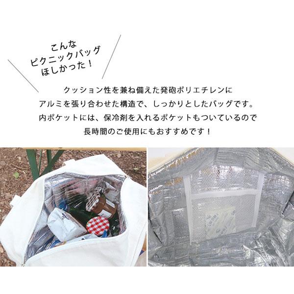柳 保冷付 ランチバッグ S ピクニック 保冷バッグ エコ
