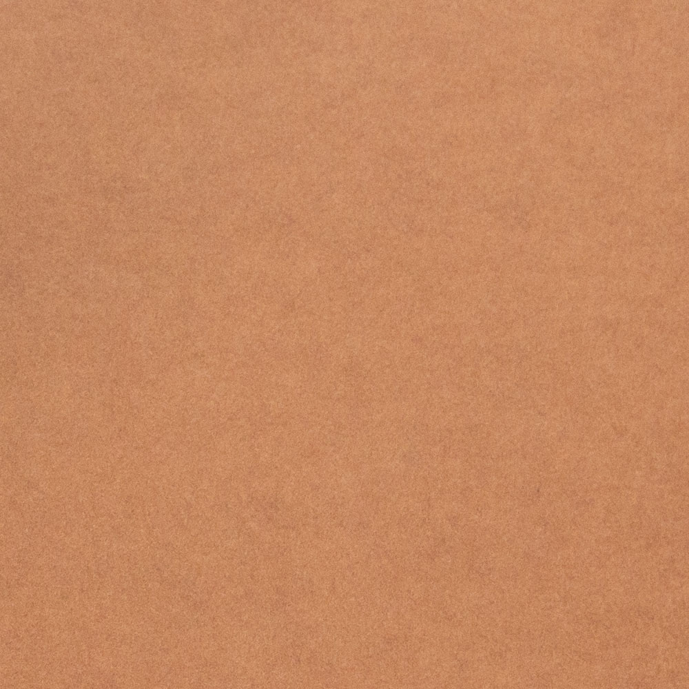 ビオトープGA−FS(連量:210)