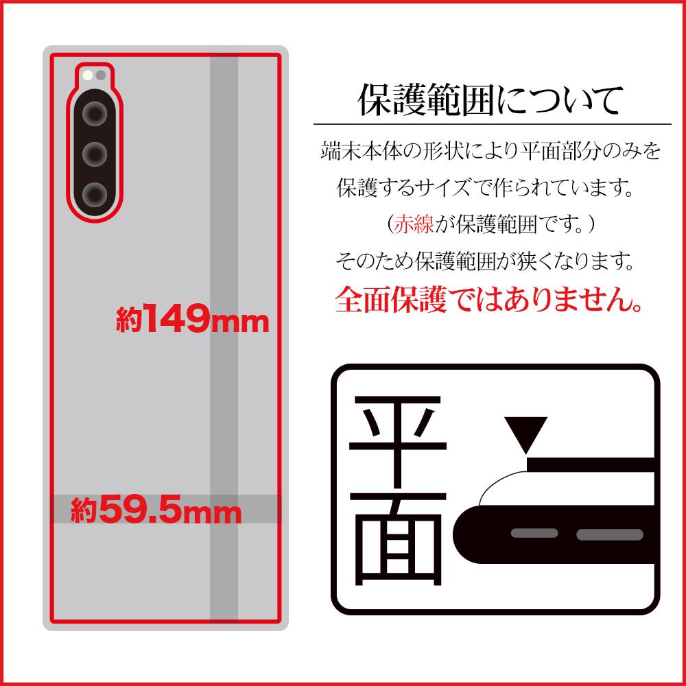 ラスタバナナ Xperia 5 SO-01M SOV41 フィルム 平面保護 背面デザインフィルム カーボン エクスペリア 保護フィルム Z2235XP5