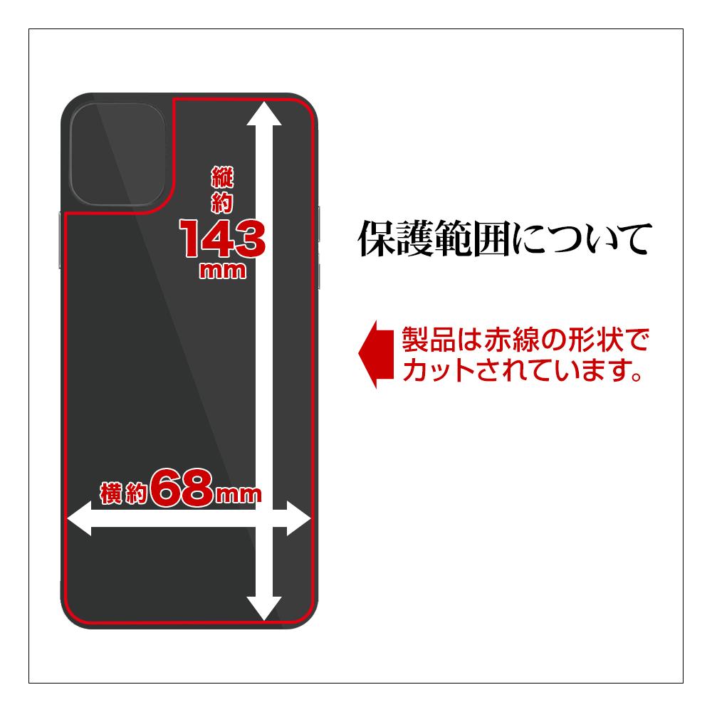 ラスタバナナ iPhone12 12 Pro フィルム 全面保護 抗菌 抗ウイルス 高光沢 アイフォン 背面保護 HP2564IP061