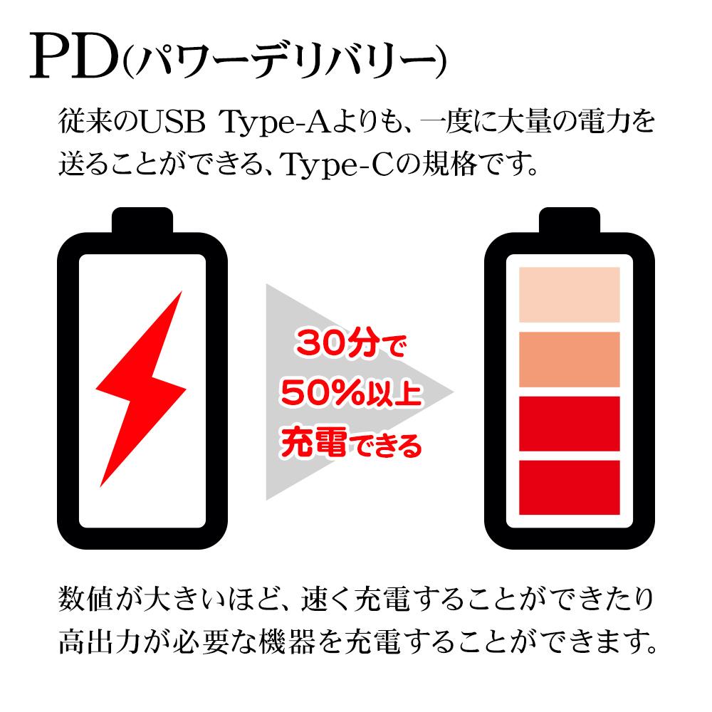 ラスタバナナ スマホ タブレット 充電・通信ケーブル PD対応 60W 3メートル タイプC パワーデリバリー Type-C to Type-C Power Delivery 3m ホワイト 高速充電 R30CACC3A01WH