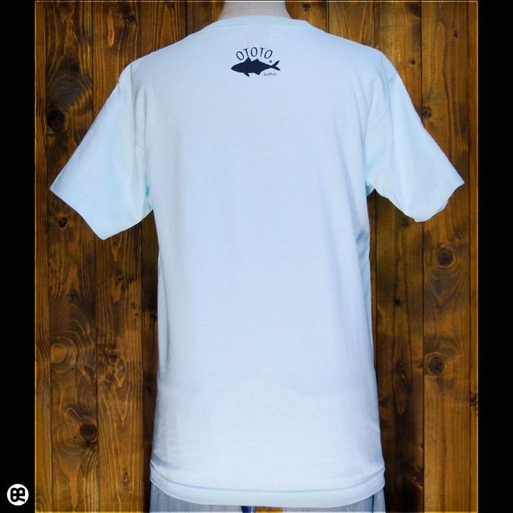 フィッシャーズ:アクアブルー:Tシャツ