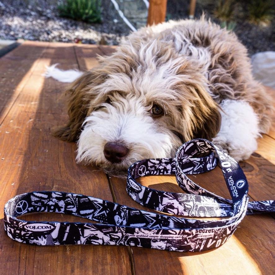 VOLCOM ボルコム 犬用リード D6702017 Collage Dog Leash [BWH]