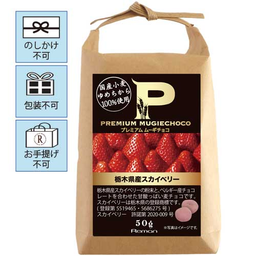 ◆100円OFF◆ プレミアムムーギチョコ 栃木県産スカイベリー ※お手提げ不可
