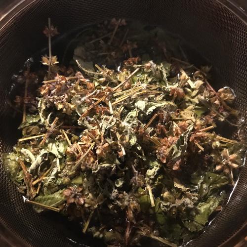 数量限定 ☆REMEDY GARDENのためだけに摘み取られた神秘のお茶! 満月のホーリーバジルティー