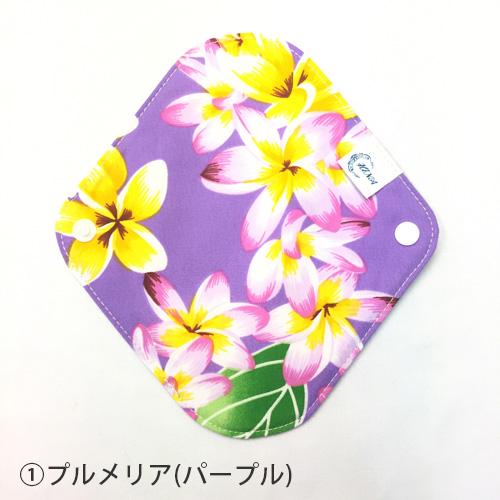 布ナプキン ライナー[おりもの・軽い日用] オーガニックリネン HINAミニ 選べる色柄 【ネコポス可】