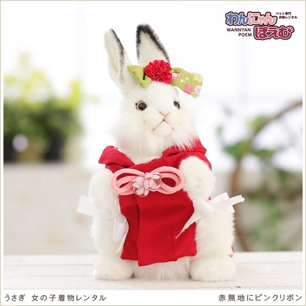 うさぎの着物レンタル ペット着物 女の子 uk-001 ペット衣装 うさぎ着物 rabbit 高級生地 かわいい 年賀状 七五三 撮影会 往復送料無料  「赤無地にピンクリボン」
