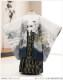 七五三 5歳 男の子 着物レンタル d5293 袴レンタル 753フルセット 貸衣装 卒園式 子供着物 2020 七草祝い 人気 「光」ブランド 白地に縁起武勇の龍