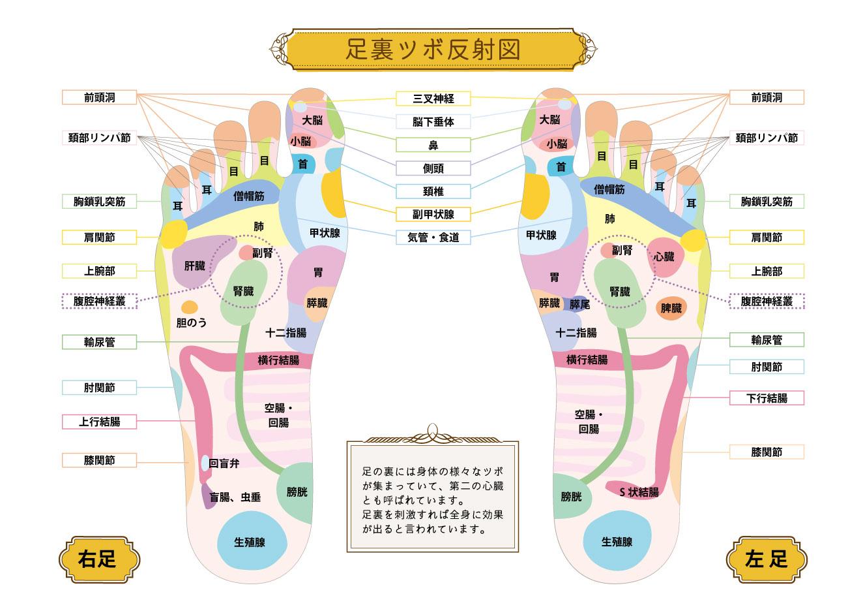 リ・ソビームちっぷ<br>永久使用タイプ(80粒)
