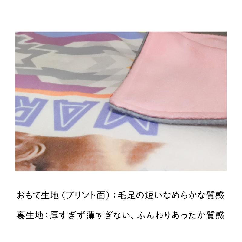 ペットの写真で作るオリジナルブランケット グレー系/Basic/フリース二重仕立て