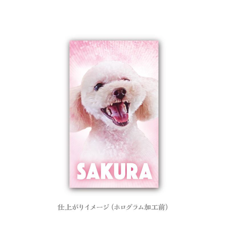 うちの子名刺 Glitter HOLOGRAM Blue-Pink/両面/50枚