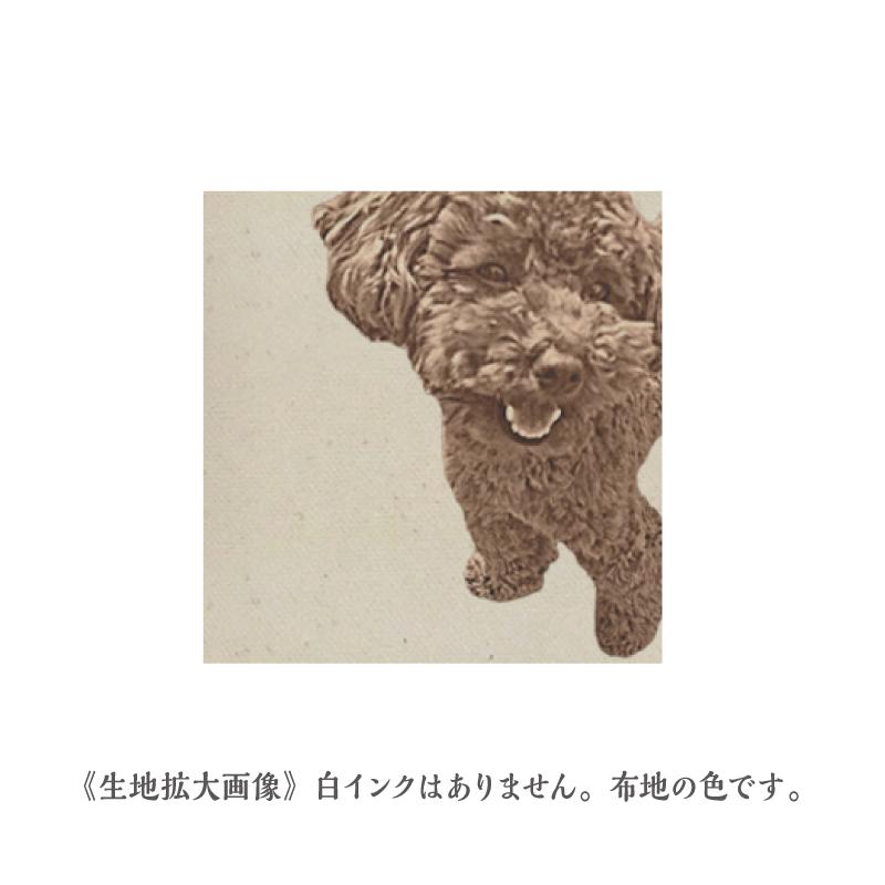 おさんぽトート【Trad】