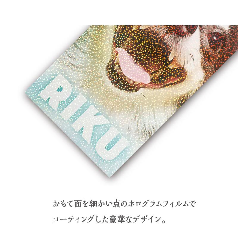 うちの子名刺 Glitter HOLOGRAM Blue-Pink/両面/100枚