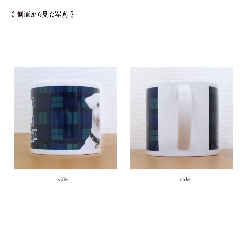 うちCafeマグS Check-B