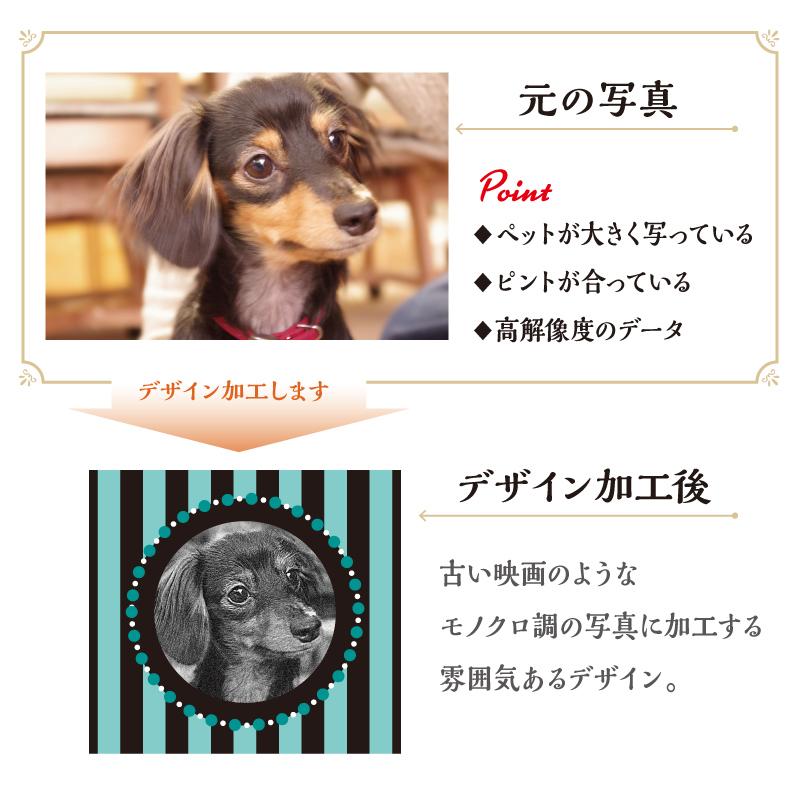 うちの子名刺 Stripe GOLD/両面/50枚