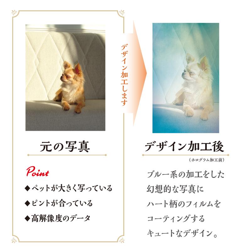 うちの子名刺 Heart HOLOGRAM Blue/両面/50枚
