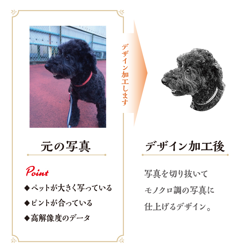 うちCafeマグS Stars