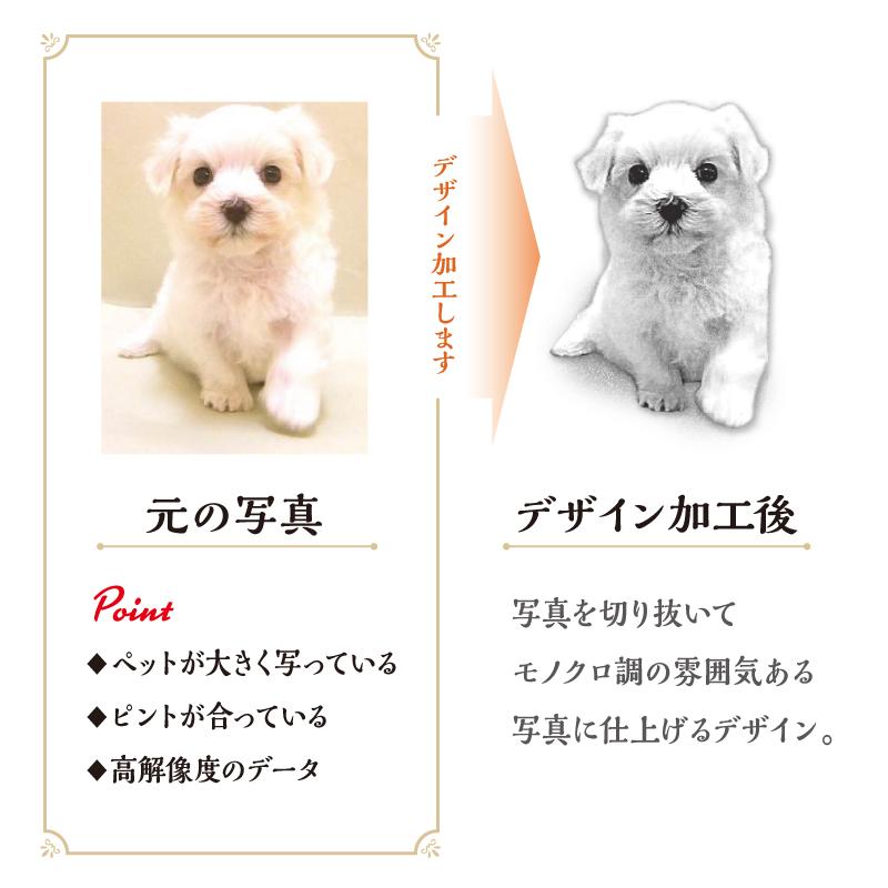 おさんぽトート【Simple】