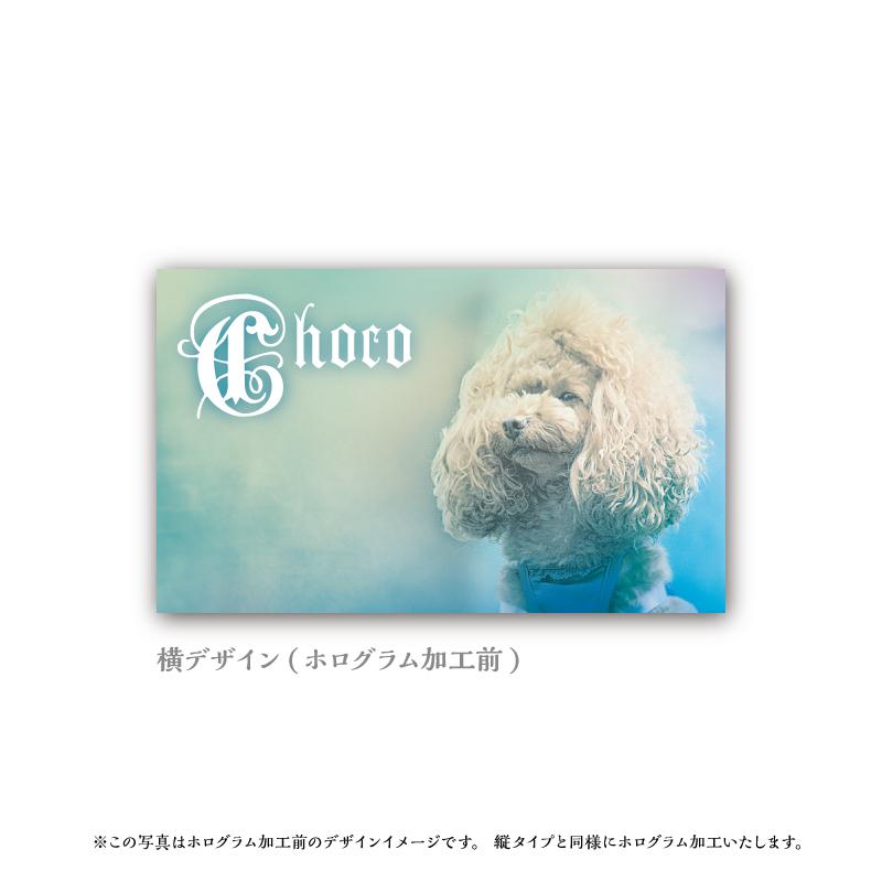 うちの子名刺 Heart HOLOGRAM Blue/両面/100枚